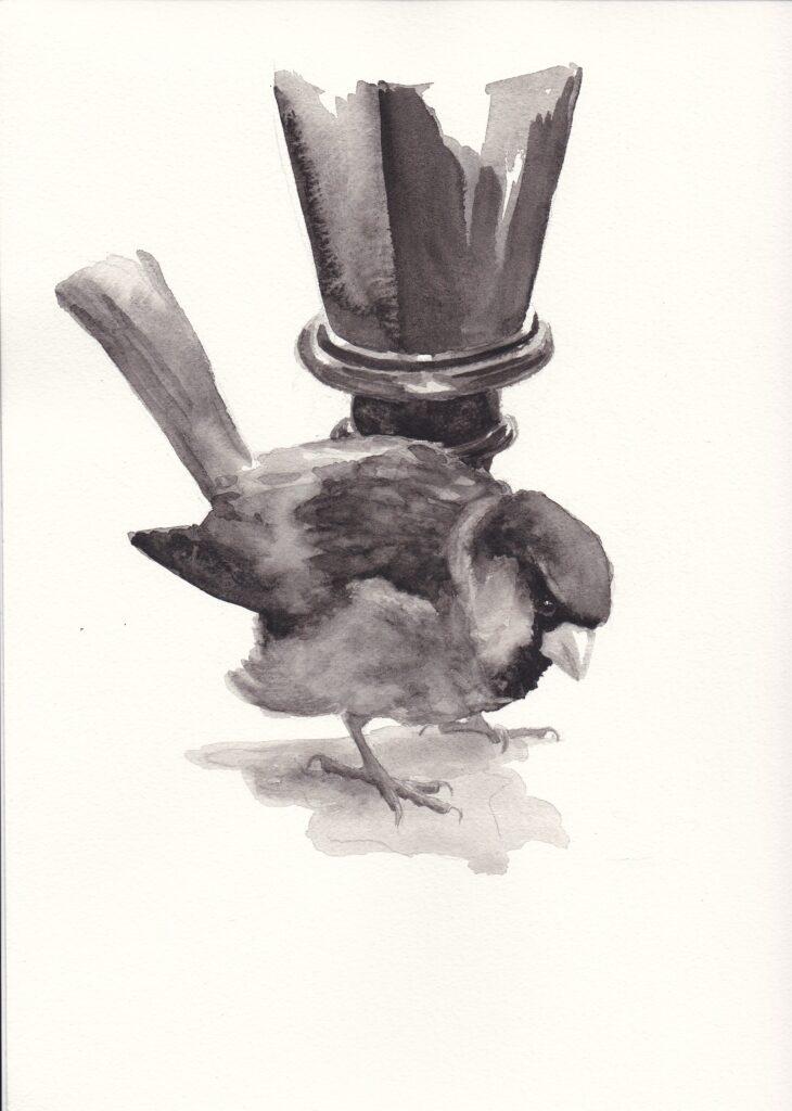 """In ihrem Buch """"Zoologisches Porträt: Lexikon"""" beschreibt Edna Gourney in Form von Poesie, poetischer Prosa und kritischem Essay ihre Beziehungen mit anderen Menschen und mit anderen Tieren, kleinen und großen."""
