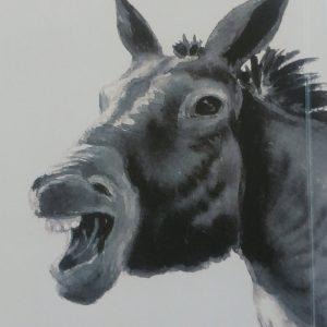 Zoologisches Porträt: Lexikon