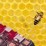 Bienentechnologie Bee Technology, High Tech, Israel, Startup Start Up, High Tech Szene