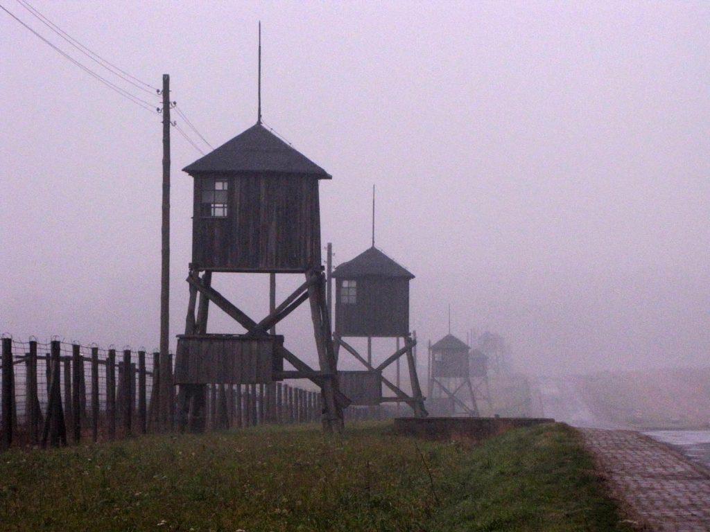 Auschwitz, Überlebende, Israel, Folgegeneration