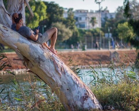Dschungel, Jungel, Tel Aviv
