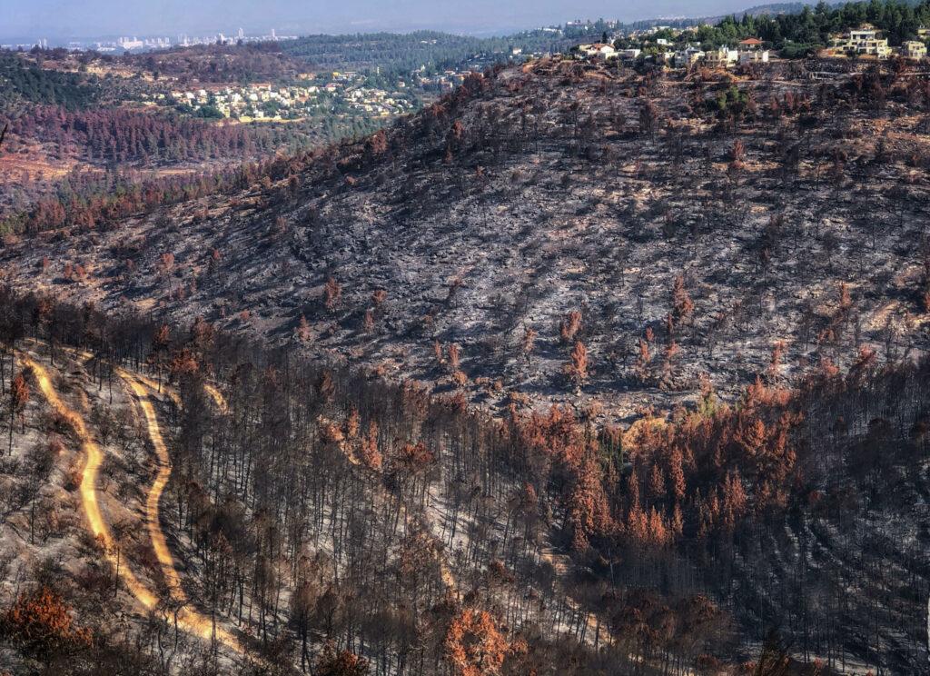 הרי ירושלים, שריפה