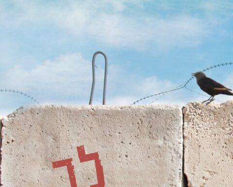 Krieg, Israel, Palästinenser, Liebe, Familie